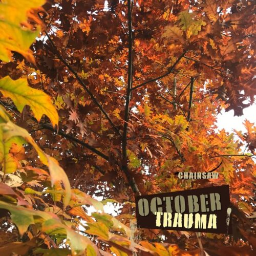 OCTOBER TRAUMA è il nuovo singolo del giovane rapper bresciano Chainsaw (chainsawmusic_94) con Digital Distribution Bundle.